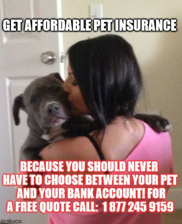 ❤️ GET AFFORDABLE PET INSURANCE ❤️ CALL FOR RATES Mon-Sun  877 245 9159